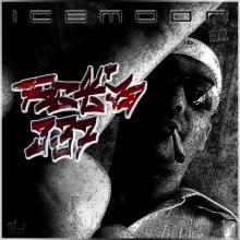 ICEMOON OFFICIAL (DJ Icemoon)